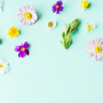 Herbs for Spring Cleaning