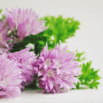 Herby Chive Blossom Butter