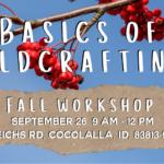 Basics of Wildcrafting: Fall