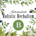 Intermediate Holistic Herbalism – B6