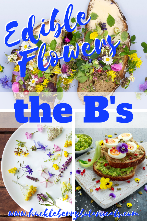 Edible flowers of bachelor's button, basil, borage and broccoli used in cooking dishes