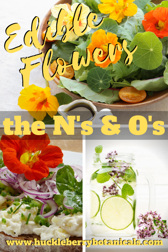 Edible flowers of nasturtium and oregano used in cooking dishes