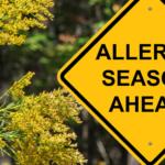 Hay Fever/Allergies