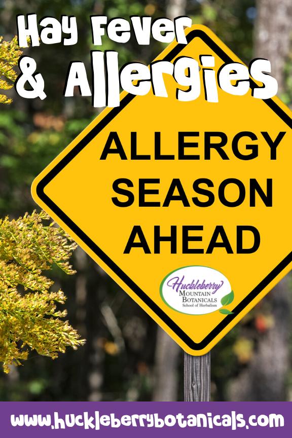 "yellow traffic sign reading ""allergy season ahead"""