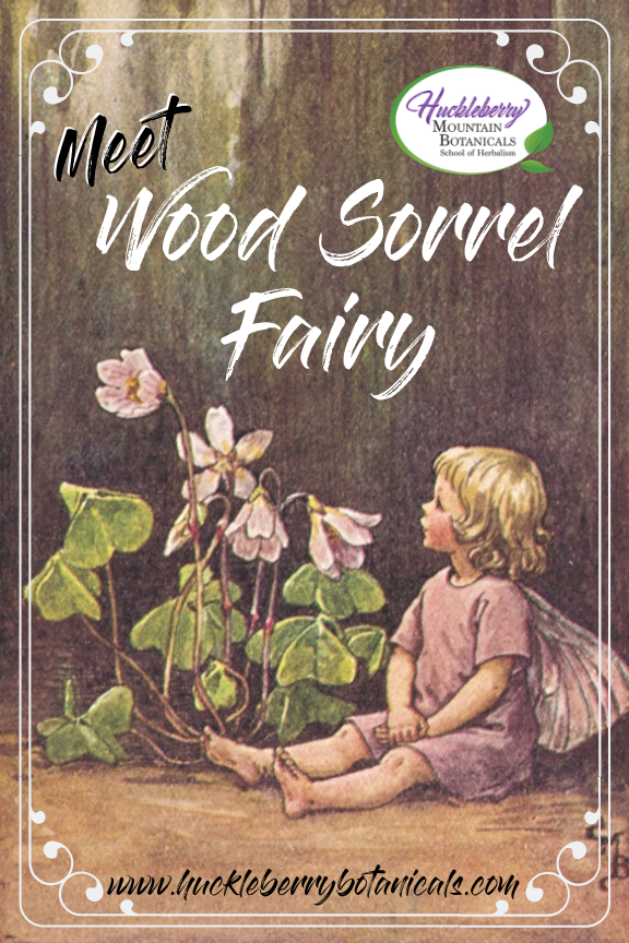 vintage illustration of a wood sorrel fairy by early-20th century artist Cicely Mary Barker