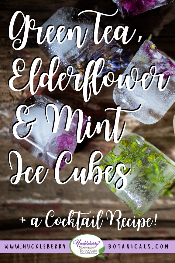 close up of floral ice cubes with herbs and flowers frozen inside