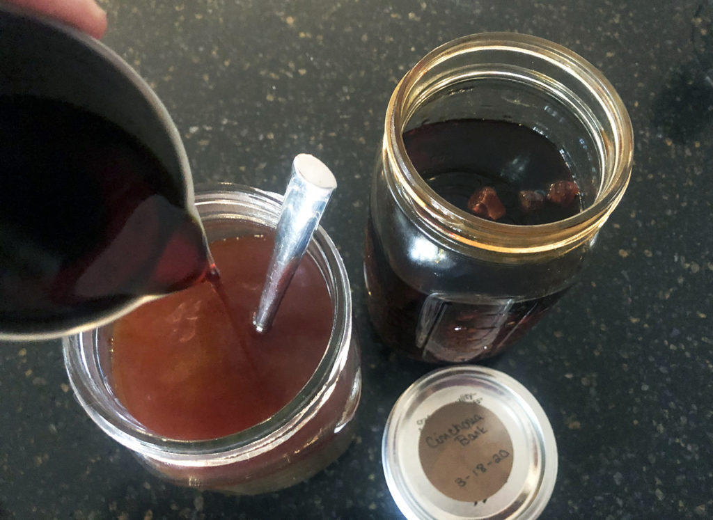 Homemade Tonic Syrup for Gin & Tonic